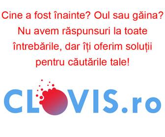 Web-Fenix.com